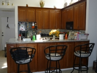 kitchen-cabinets-tampa-018