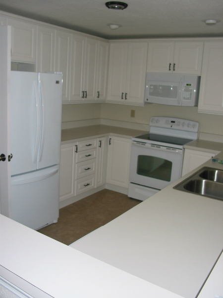 Tampa Kitchen Remodeling Reviews For