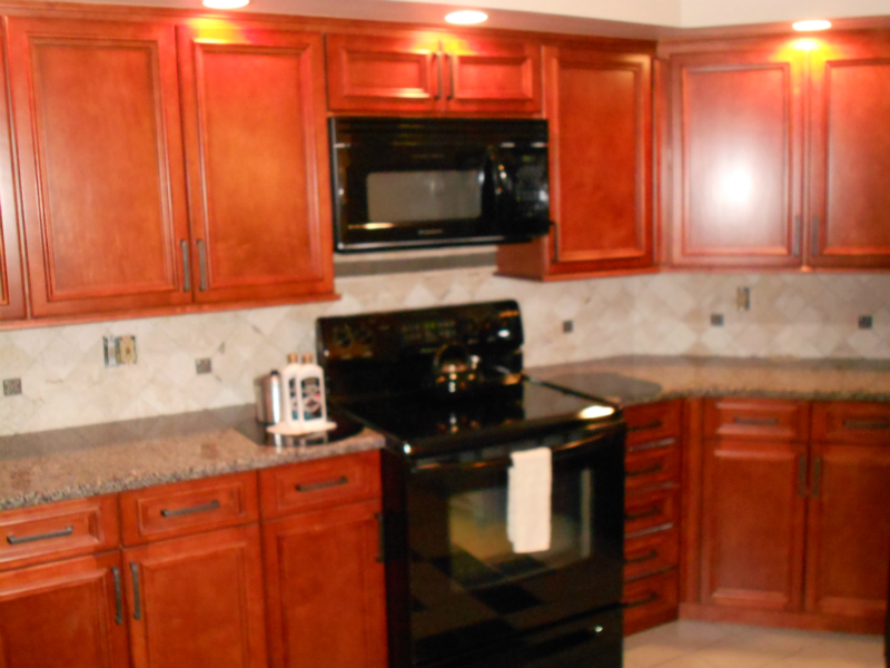 Kitchen Cabinets Tampa 050